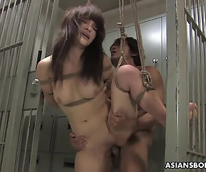 Bound Asian hottie gets fucked with force behind the bars